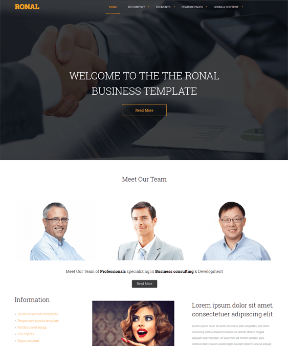 ronal business drupal themes