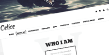 more best cv resume wordpress themes feature
