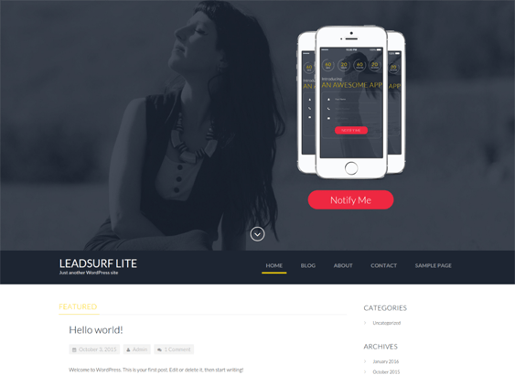 leadsurf free wordpress themes promoting apps