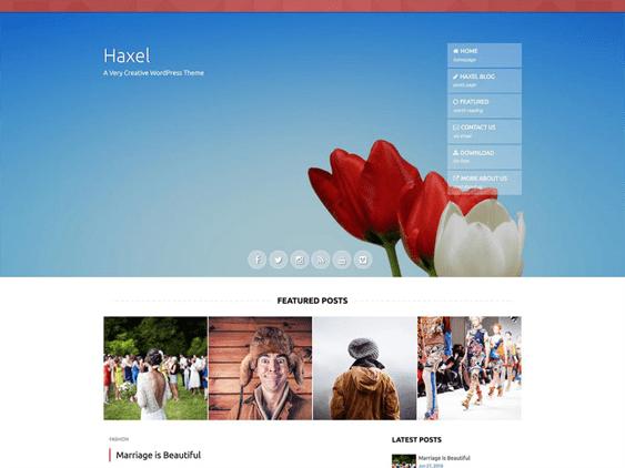 haxel free parallax wordpress themes