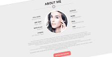 best cv resume wordpress themes feature