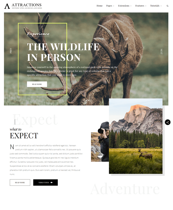 attractions wildlife park charity wordpress themes