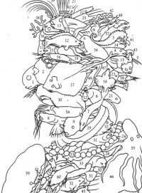 Free coloring pages of guiseppe arcimboldo