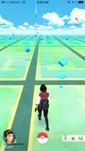 Niantic, Inc. Pokémon Go. 2016. Screenshot by the author.
