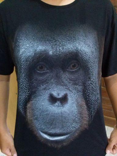 Tentang Orangutan dan Raline Shah