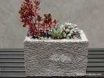 Homemade Concrete Planters Pots