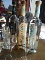 A full array of Montalvo tequila