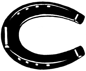 Image: http://commons.wikimedia.org/wiki/File:Horseshoe_(PSF).png