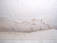 Termite Damage Signs and Control - Ceiling   Foundation ...