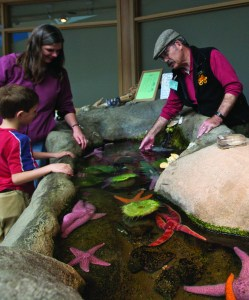 Under the guidance of volunteer docent Harry Tomson, the touch tank at the Hatfield Marine Science Center in Newport captivates Noah Goodwin-Rice, left, and his mom Cait Goodwin. (Photo: Jim Folts)