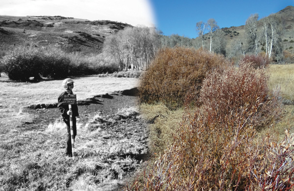 Researchers photographed this stream channel in the early 1990s (left) and again from the same location in 2013. (Photos courtesy of Bill Ripple)