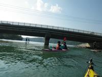 橋を通過すると、そこはマングローブ