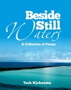 beside still waters cover