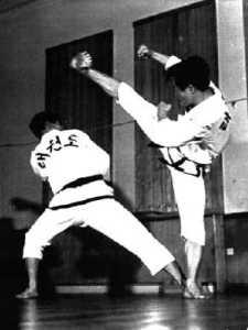 Kwon Abzeichen