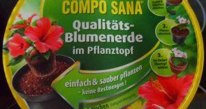 COMPO SANA Qualitäts-Blumenerde im Pflanztopf - Titel