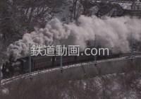 列車番号033 「D51 498+旧客 上越線 信越線 汽笛高らか」