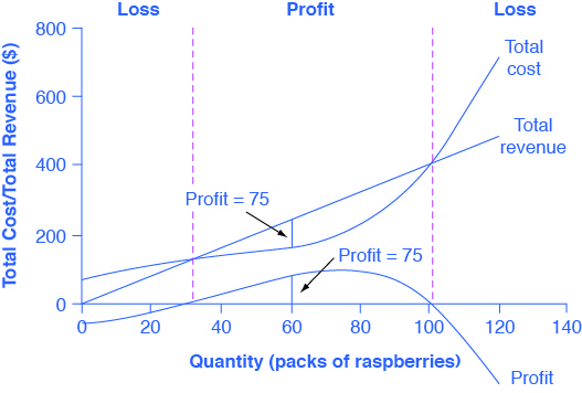 Profit Maximization in a Perfectly Competitive Market Microeconomics