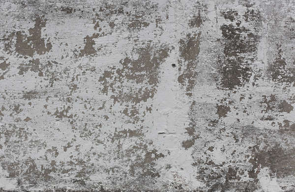 Light Grey Paint Plasterwhiteworn0108 - Free Background Texture - Plaster