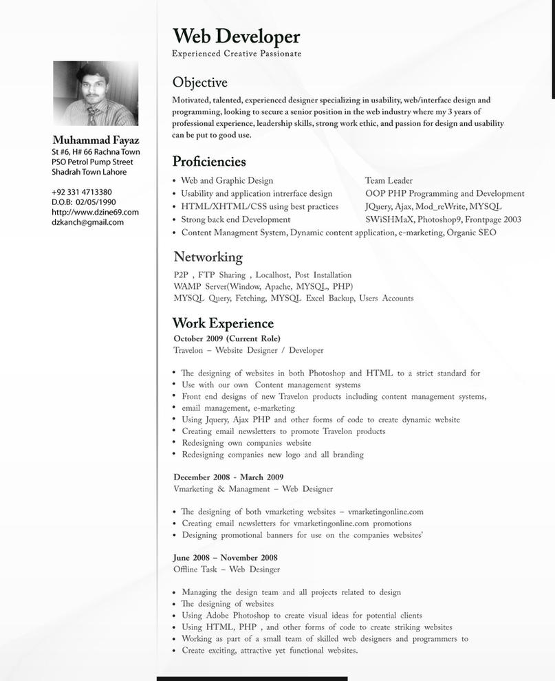 cv for web developer coverletter for job education cv for web developer cv template high quality resume templates cv professional by dzkanch on