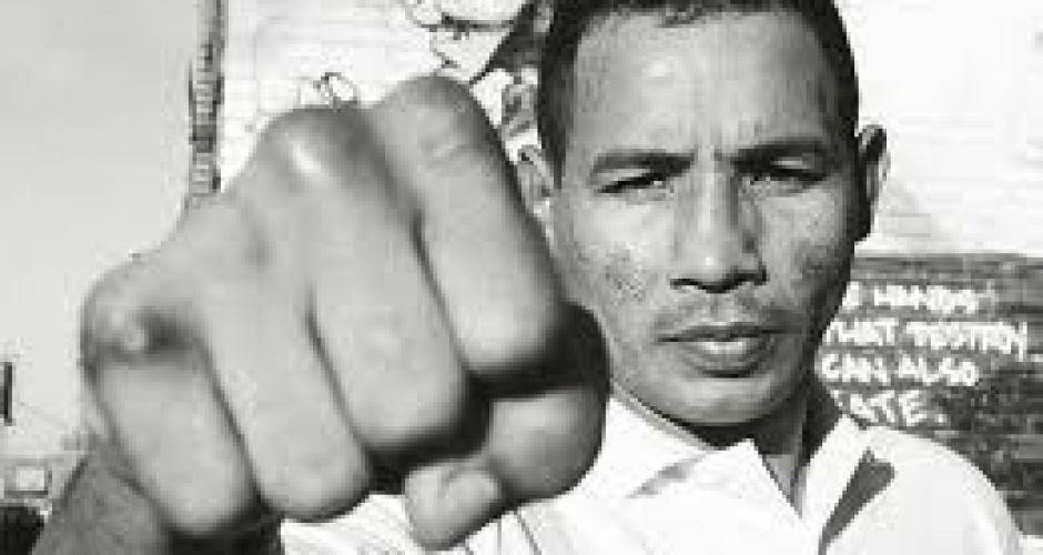 Ricardo Mayorga To Resume Boxing In Search Of Fourth World Title