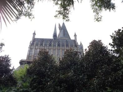 Potter-19