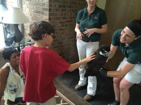 Petting an owl!
