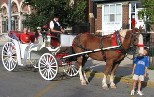 horse carriage at chicago