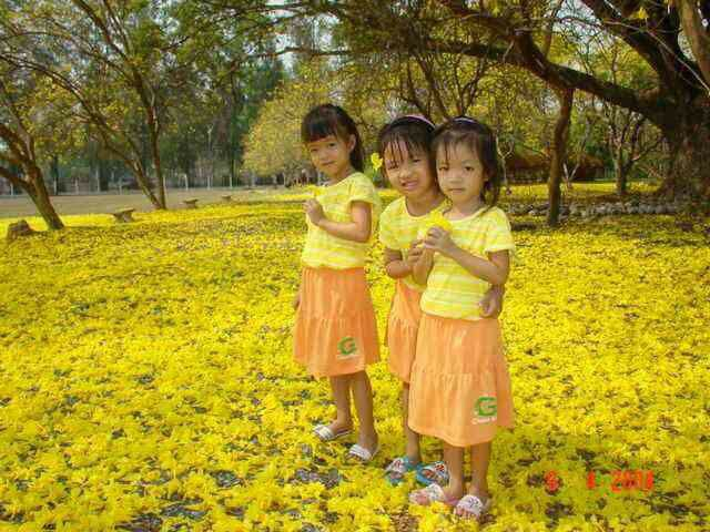 beautiful flower with 3 girls