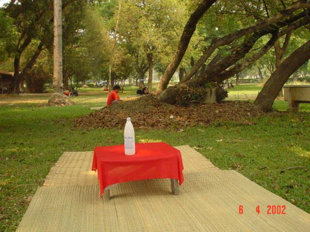 โต๊ะแดงรอบหนองกระทิง ปี 2002