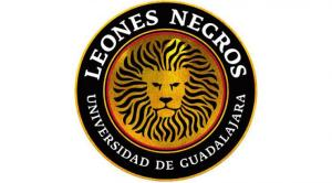 leones_negros