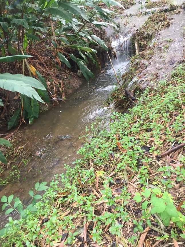 waterfall01