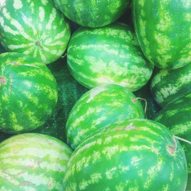 INGRIDESIGN_snapshots from Puglia :: watermelons