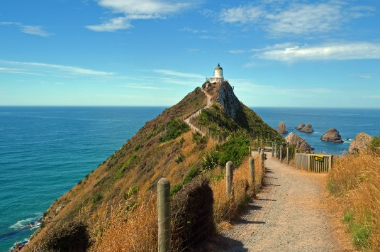 Trail leading up to the Lighthouse at Nugget Point