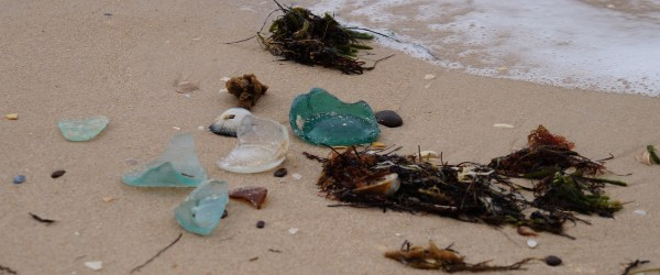 Glass Washed up On Our Shores