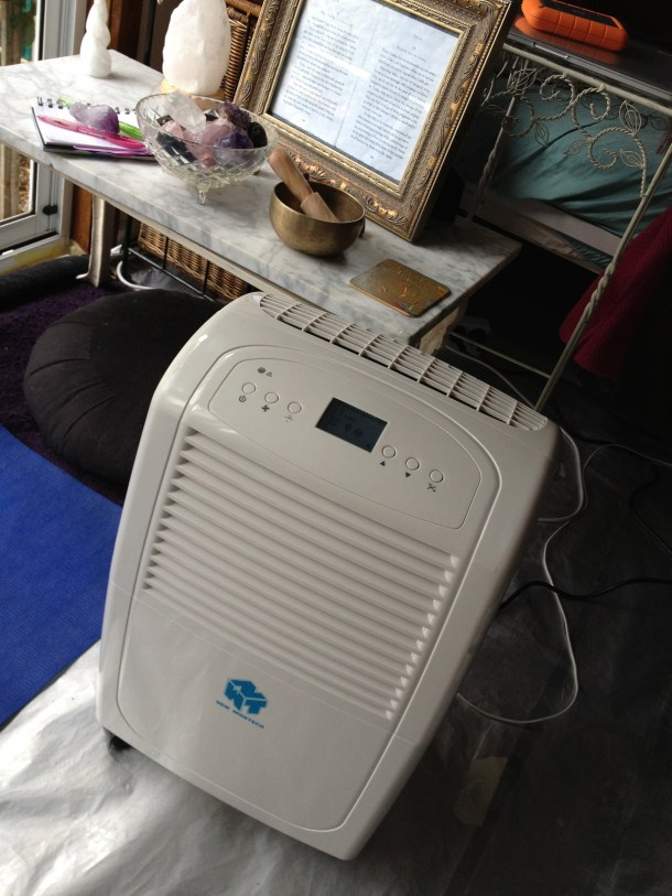 This One Sure Thing: My Ausclimate Dehumidifier