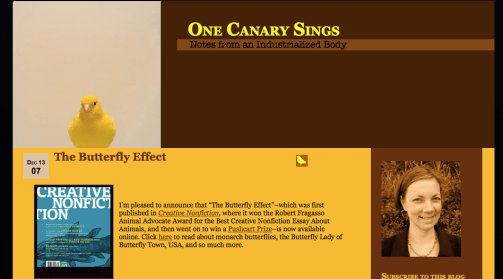 One Canary Sings