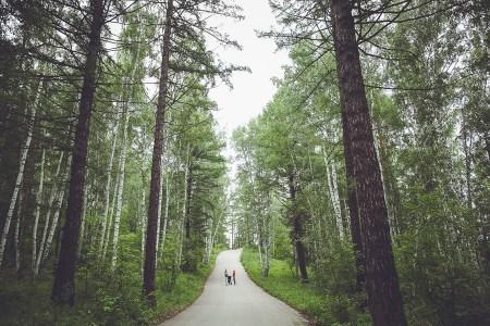 День на природе: семья Кашаевых