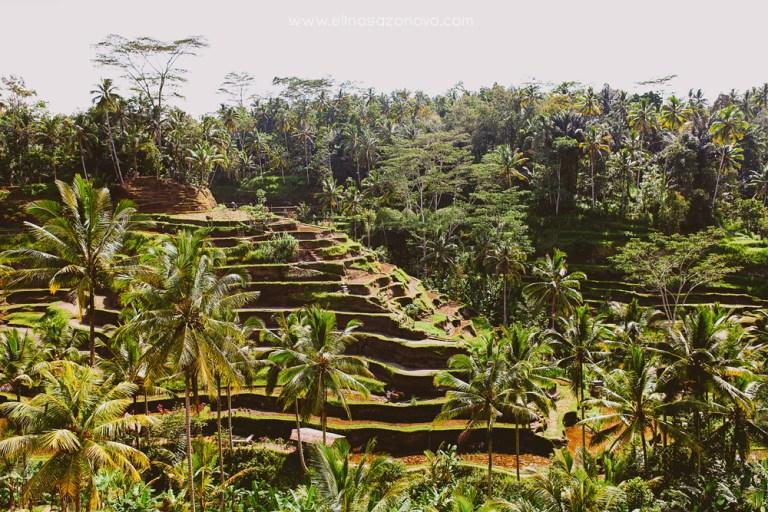 Атмосфера гармонии и свободы: вдохновляющий Бали