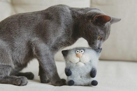 Русская голубая: серый кот Хамон