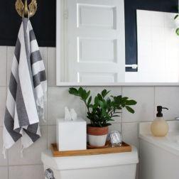 Interior vannaya (22)