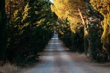 Под солнцем Тосканы: путешествие в Италию