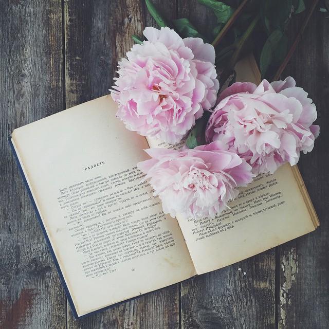 Книжный шкаф: 5 книг о семейной жизни