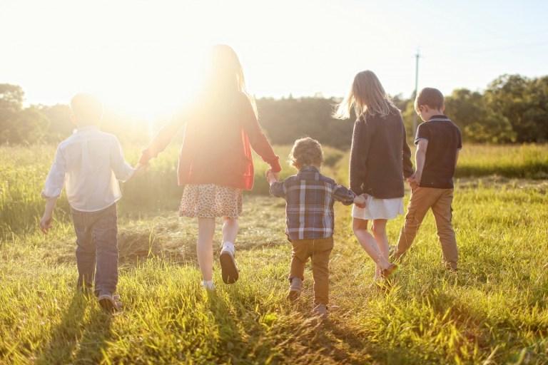 Лето на лугу: фотопрогулка с детьми