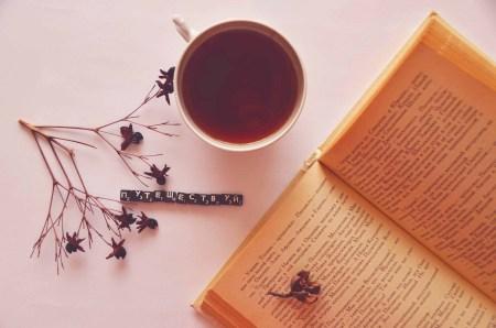 Книжный шкаф: 5 книг о путешествиях