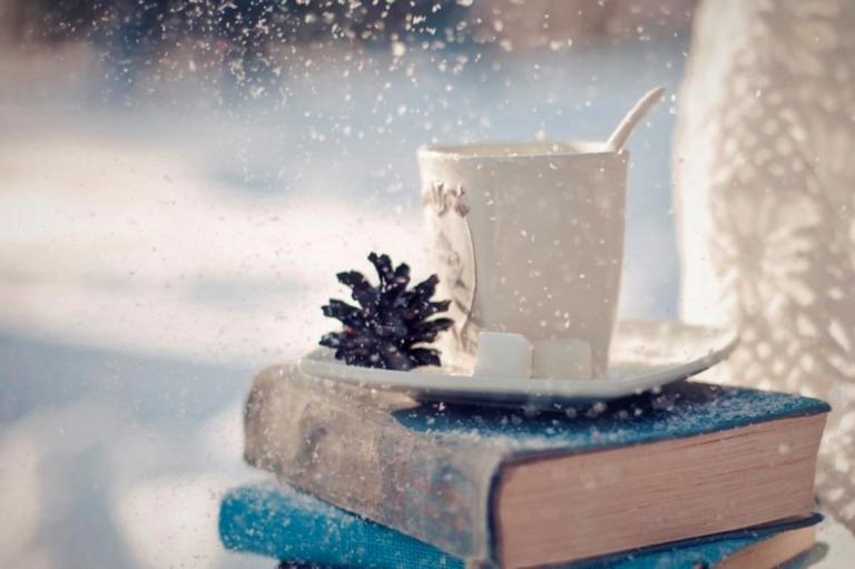 Книжный шкаф: 5 зимних книг