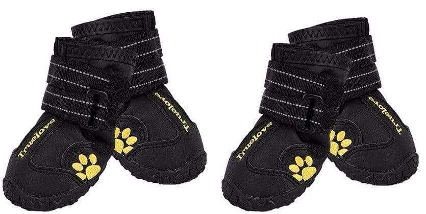 Top 9 Best Dog Shoes In 2018 Reviews
