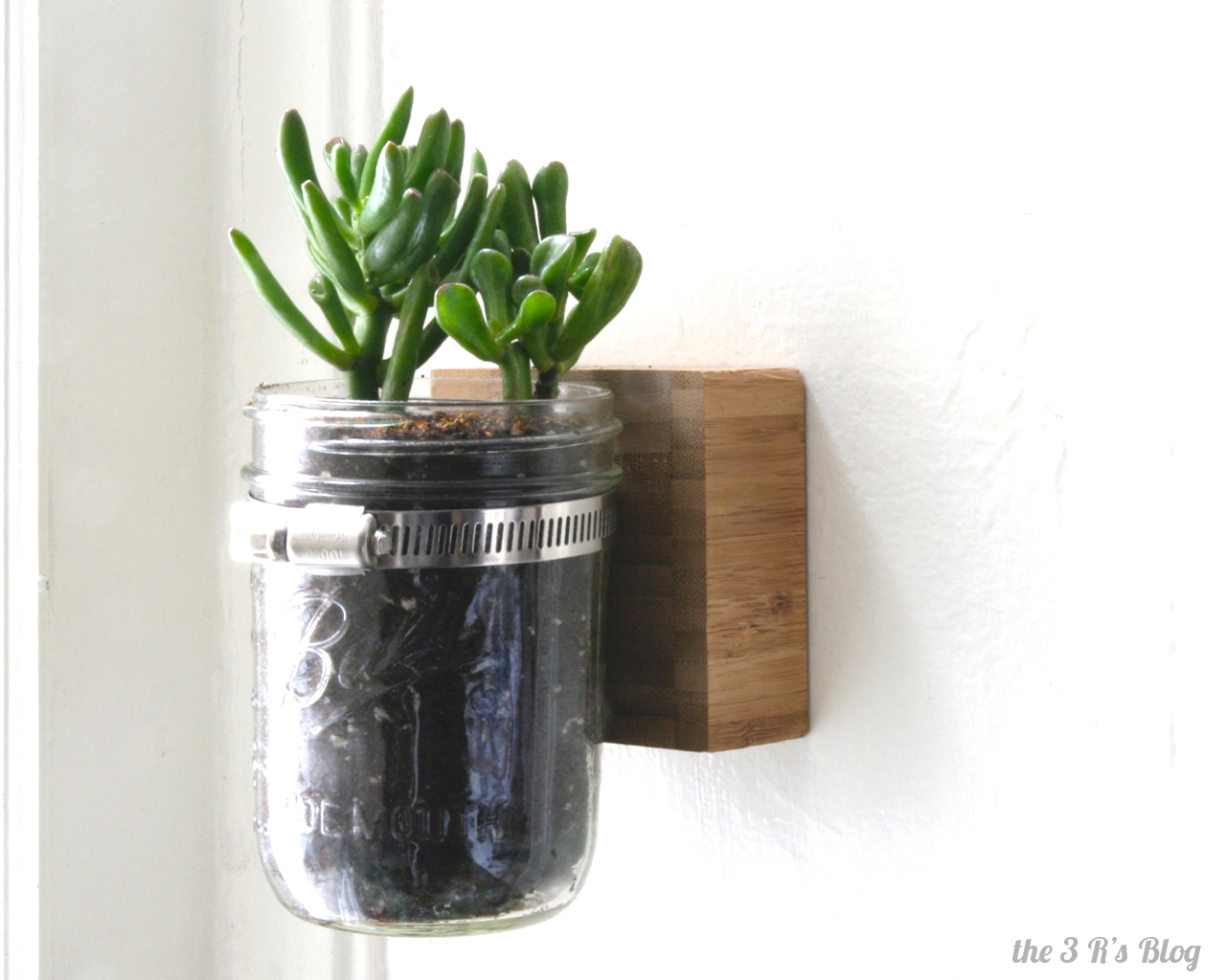 Cubicle Wall Planter Hanging Mason Jar Planter The 3 R S Blog