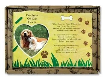 sad when your dog dies