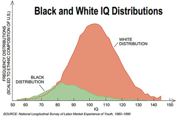 Image result for IQ rates by race