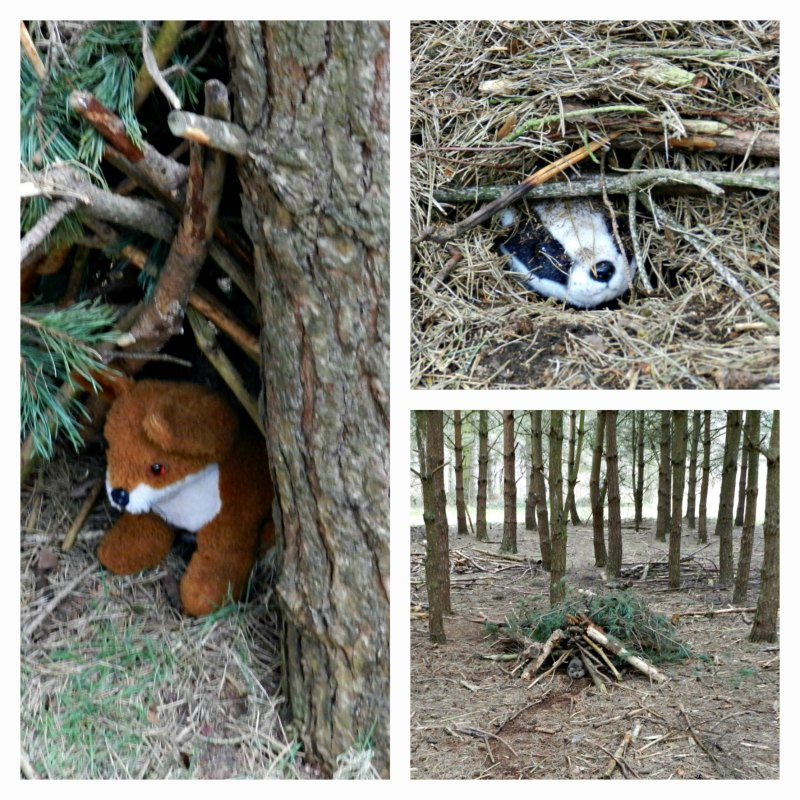 Sherwood Pines Den Building, nature play, playing with sticks